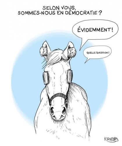 Krapo_cheval_democratie-2-66304-2c0f5.jpg