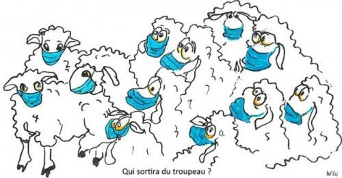 L-dessin-des-moutons-masques-web-74c51-44aaa.jpg