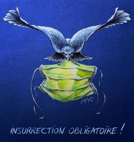 ProjetKO-dessin-Insurrection-obligatoire-masques-web-e8a8f-25c98.jpg