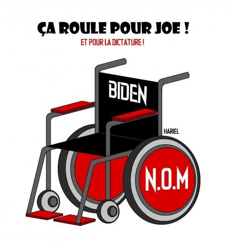 Fauteuil roulant pour Joe.jpg